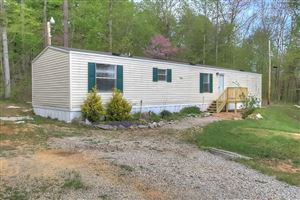 Photo of 53 Fork Skaggs Road E, Mt Vernon, KY 40456 (MLS # 1908729)