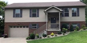 Photo of 1007 Eagle Point Drive, Berea, KY 40403 (MLS # 1919947)
