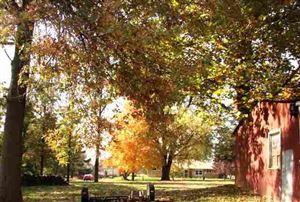 Photo of 515 N Marion Street, Mt Pulaski, IL 62548 (MLS # 20070338)