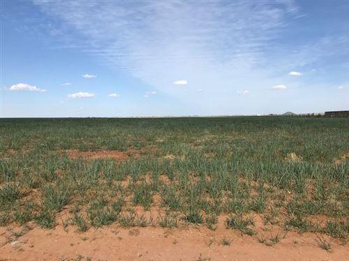 Photo of 17413 Farm Road 1730, Lubbock, TX 79424 (MLS # 202003624)