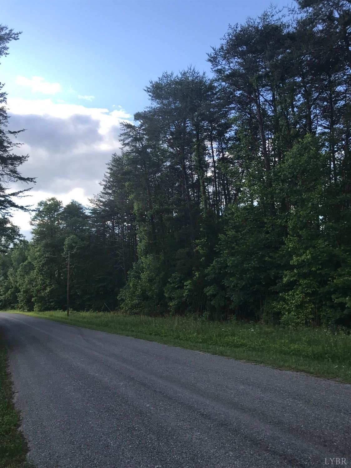 Photo for 231 Swan Creek Road, Gladys, VA 24554 (MLS # 329145)