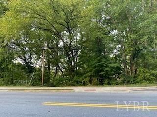 Photo of 0 Bedford Avenue, Altavista, VA 24517 (MLS # 334192)