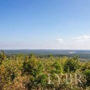Photo of 0 Forest Chapel Road, Appomattox, VA 23958 (MLS # 329702)