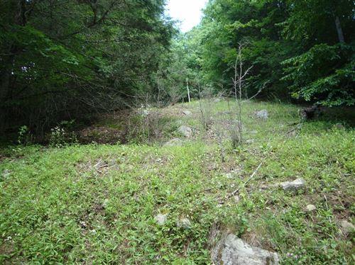 Photo of 0 Zinks Mill School Road, Montebello, VA 24464 (MLS # 298900)