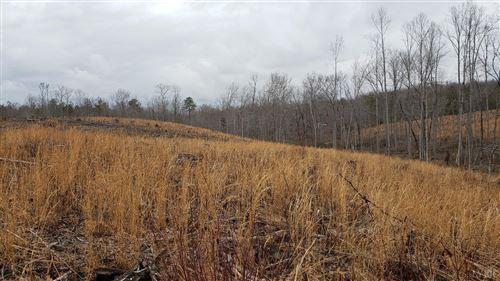 Tiny photo for 0 Hundley Branch Road, Scottsville, VA 24590 (MLS # 328973)