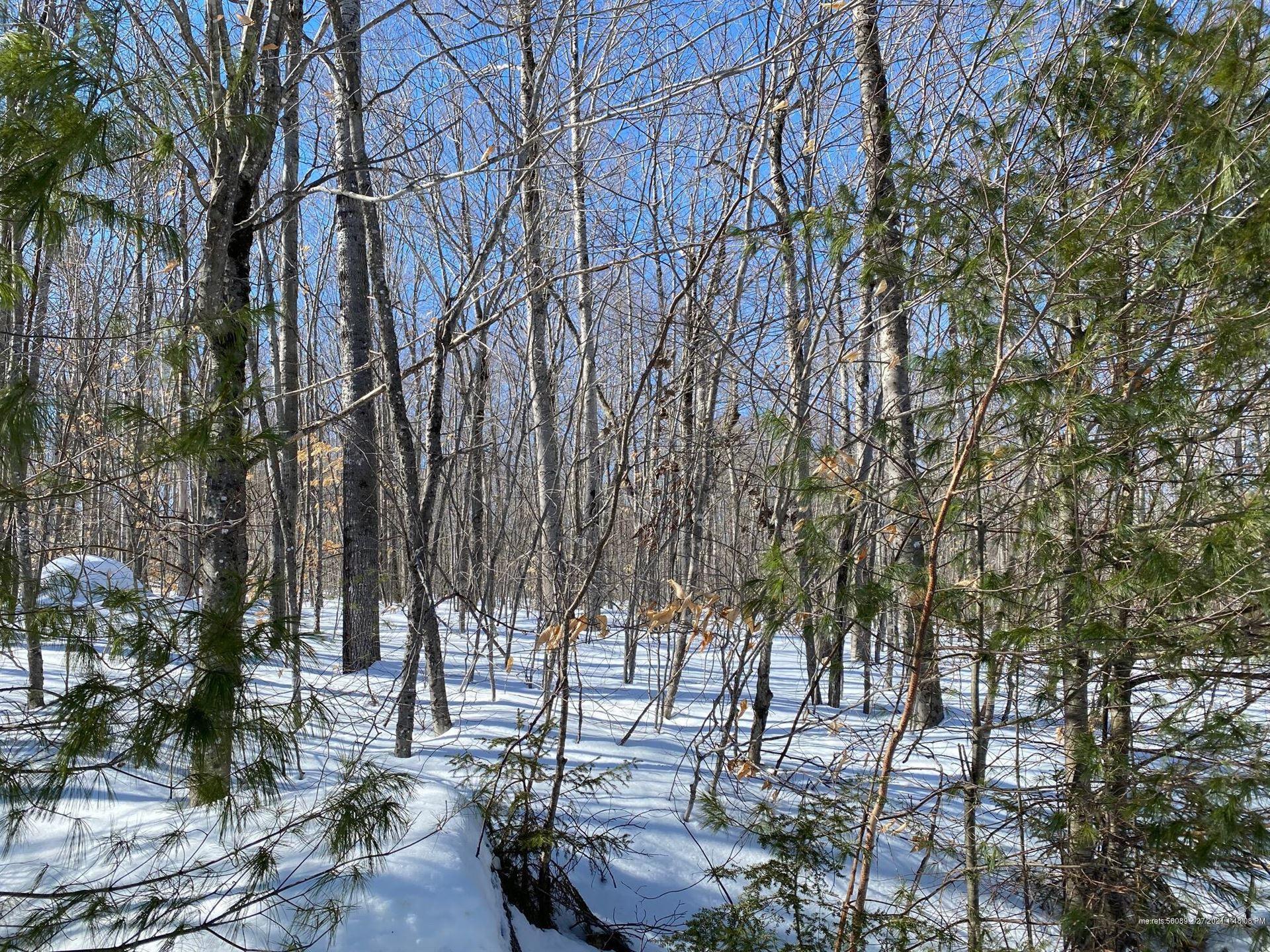 Photo of Lot 4 Log Cabin Lane, Greenwood, ME 04255 (MLS # 1483028)