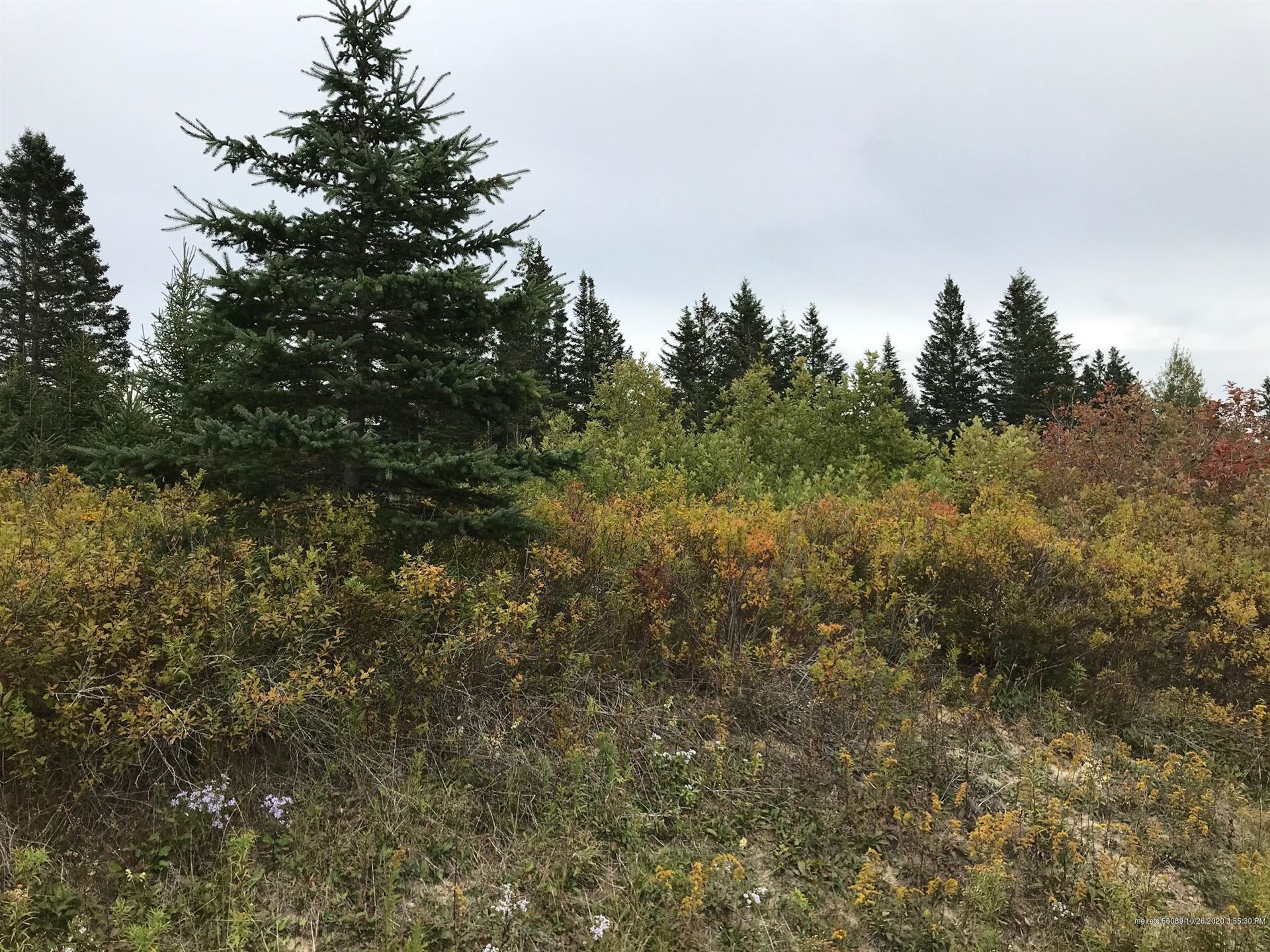 Photo of 0 Station Road, Columbia, ME 04623 (MLS # 1470079)