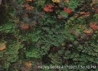 Photo of 00 Deering Ridge Lot#2 Road, Shapleigh, ME 04076 (MLS # 1488085)