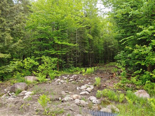Photo of Lot 1 Skyline Drive, Greenwood, ME 04255 (MLS # 1419125)