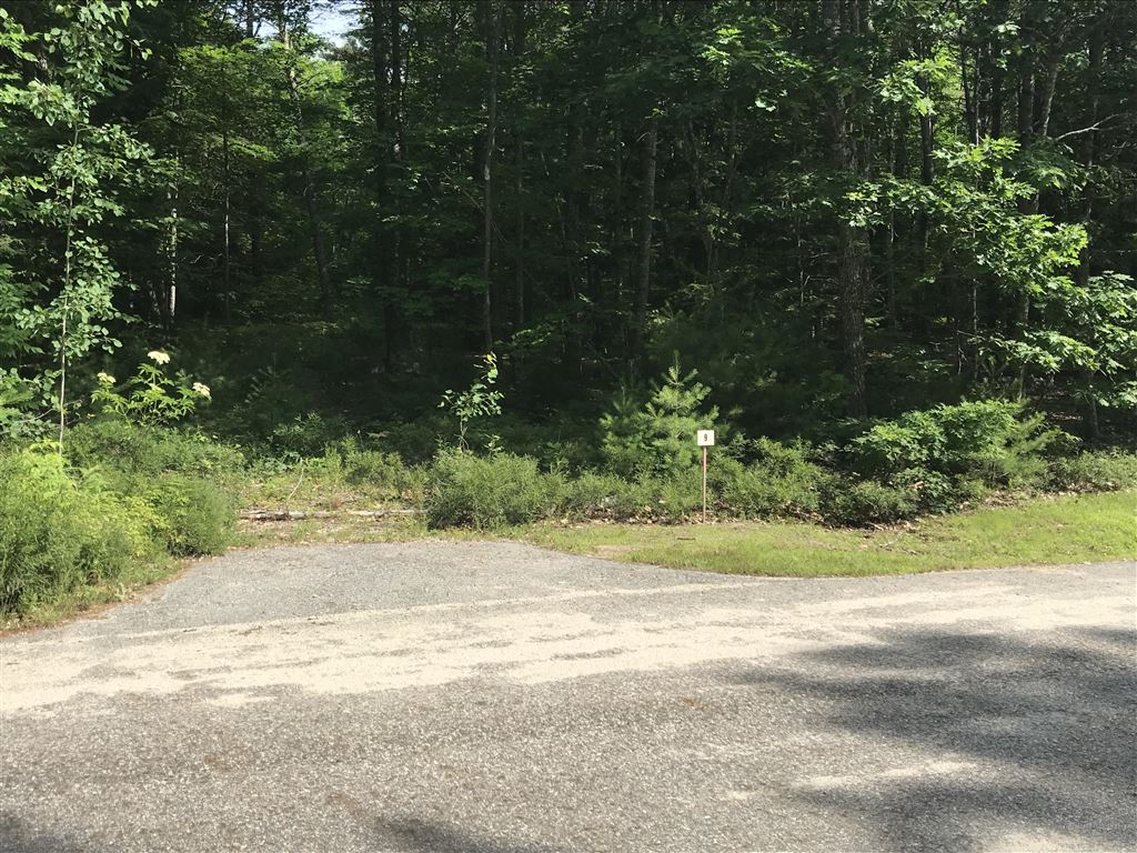 Photo of 14 Mayberry Landing, Naples, ME 04055 (MLS # 1424128)