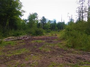 Photo of Lot 16 Farmers Hill Road, Andover, ME 04216 (MLS # 1429162)