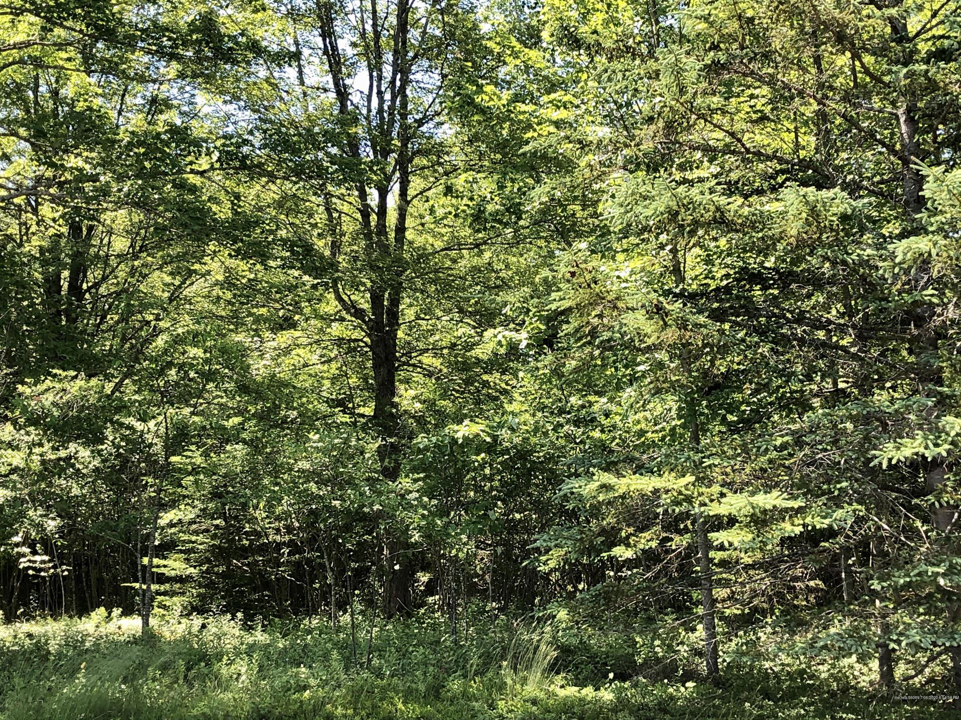 Photo of 0 Tremont Road, Tremont, ME 04674 (MLS # 1459163)