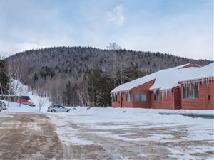 Photo of 372 Skiway Road #203, Newry, ME 04261 (MLS # 1406184)
