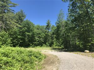 Photo of 115 Bailey Road, Bethel, ME 04217 (MLS # 1420191)