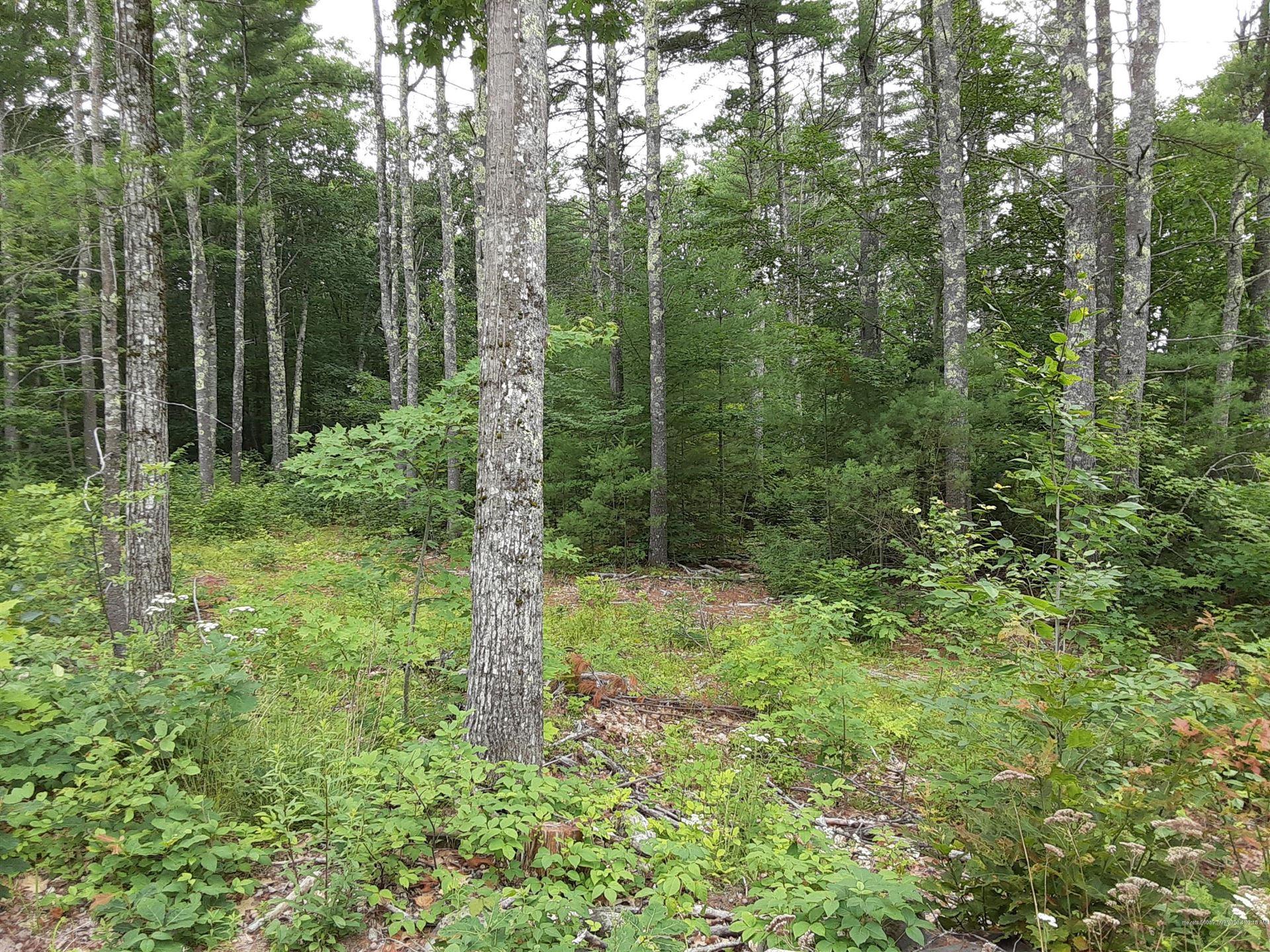 Photo of 36acres Deering Ridge Road, Waterboro, ME 04030 (MLS # 1459193)