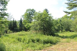 Photo of 411 Town House Road, Whitefield, ME 04353 (MLS # 1430198)