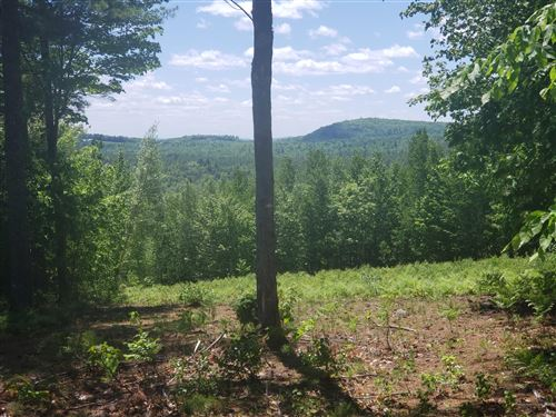 Photo of Lot #2 David Road, Waterford, ME 04088 (MLS # 1487200)