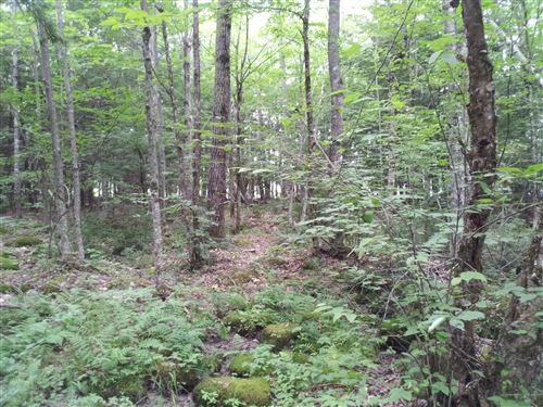 Photo of 0 Cedar Lane, Raymond, ME 04071 (MLS # 1487225)