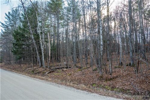 Photo of Lot 69 Beech Road, Greenwood, ME 04255 (MLS # 1443239)