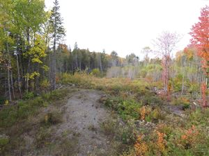 Photo of Map 53 Lot 10 Curtis Farm Road, Lincoln, ME 04457 (MLS # 1436242)