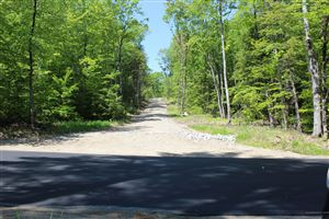 Photo of Lot 1 North Road, Parsonsfield, ME 04047 (MLS # 1418270)