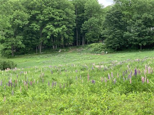 Photo of 0 Dutton Hill Road, Windham, ME 04062 (MLS # 1491276)
