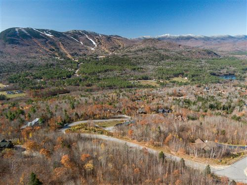 Photo of Lot 25 Mount Will Drive, Newry, ME 04261 (MLS # 1474282)