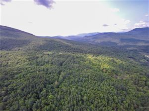 Photo of Lot A Bear River Road, Newry, ME 04261 (MLS # 1425300)