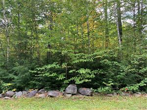 Photo of LOT 2 Deer View Lane, Bethel, ME 04217 (MLS # 1434302)
