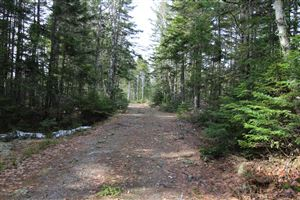 Photo of M33/L2+3 Shelton Trail, Rangeley Plt, ME 04970 (MLS # 1413308)