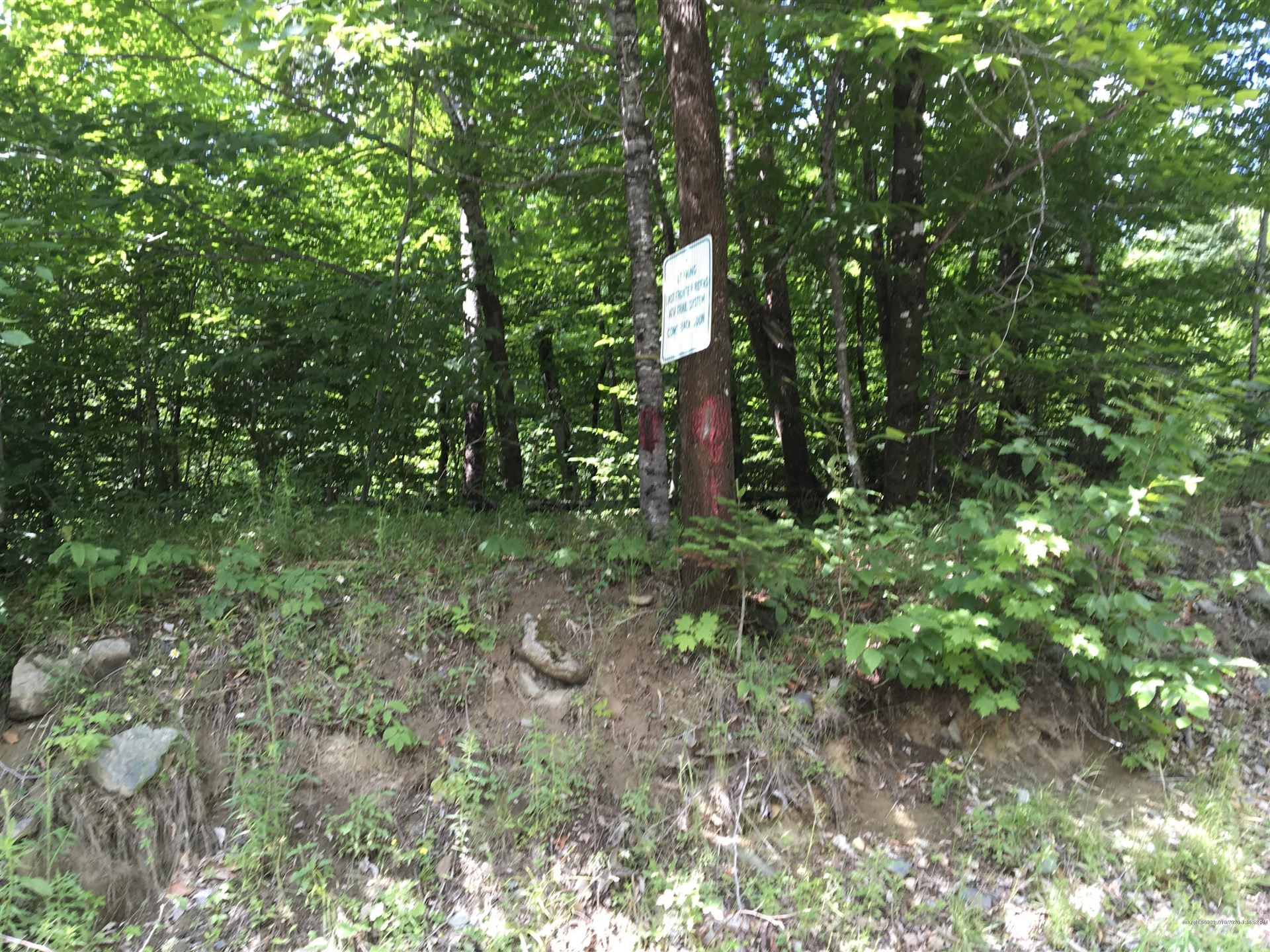 Photo of M9L1 Old Brownville Road, Sebec, ME 04481 (MLS # 1459316)