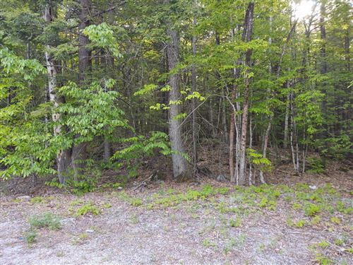 Photo of Lot# 11 Bakerstown Road, Poland, ME 04274 (MLS # 1454319)