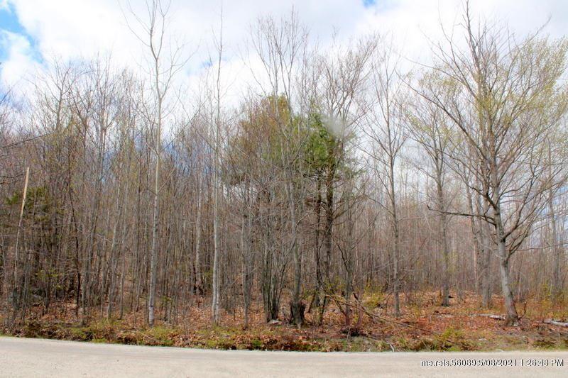 Photo of Lot 4 Fuller Hill Road, Woodstock, ME 04219 (MLS # 1443329)