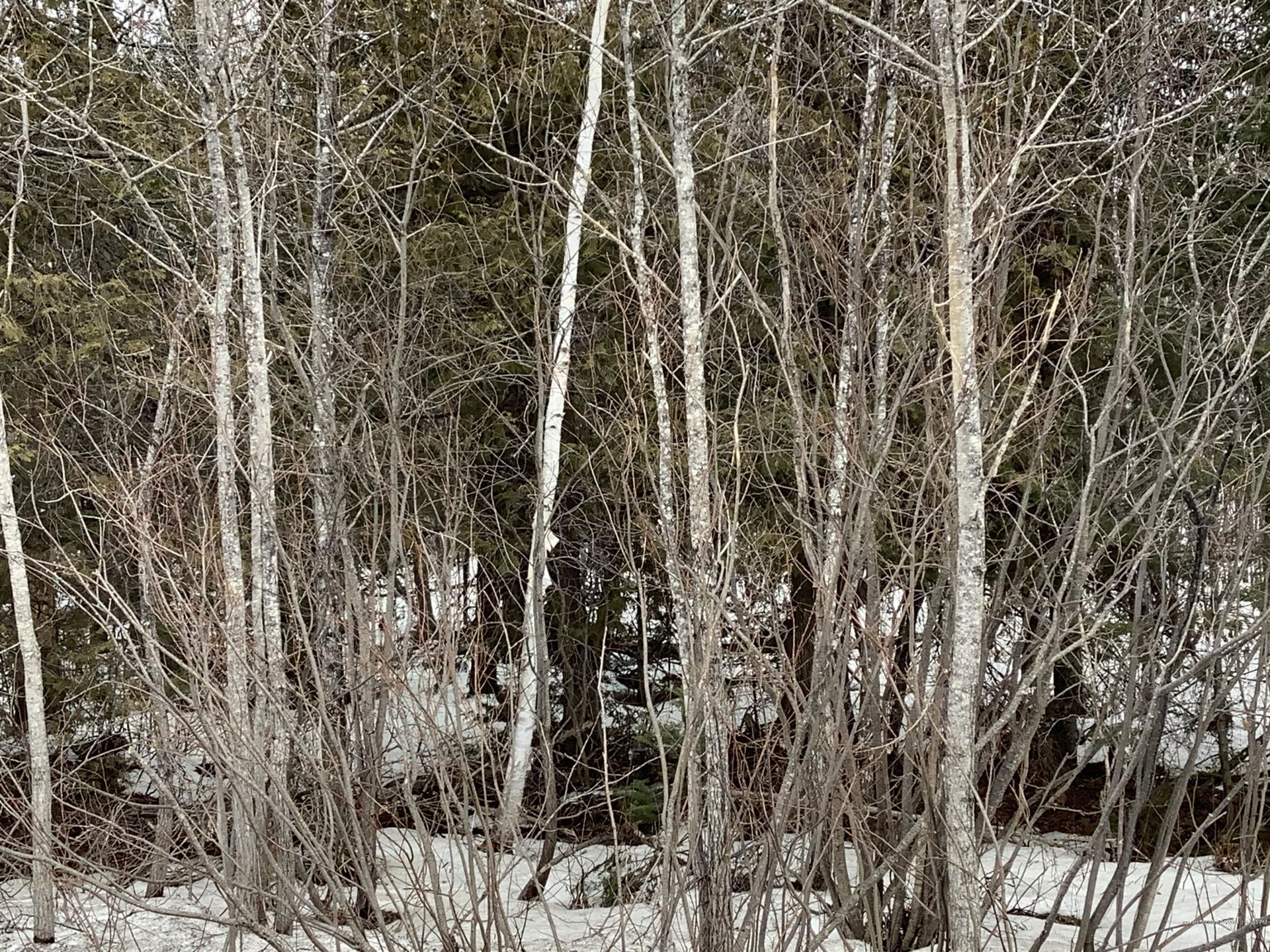 Photo of 0 Strickland Road, Fort Fairfield, ME 04742 (MLS # 1485342)