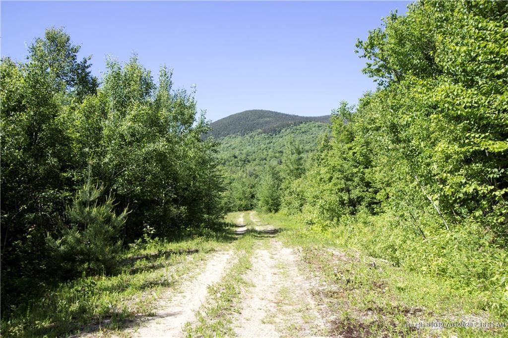 Photo of 0 Longview Trail/glades View Avenue, Newry, ME 04261 (MLS # 1459363)