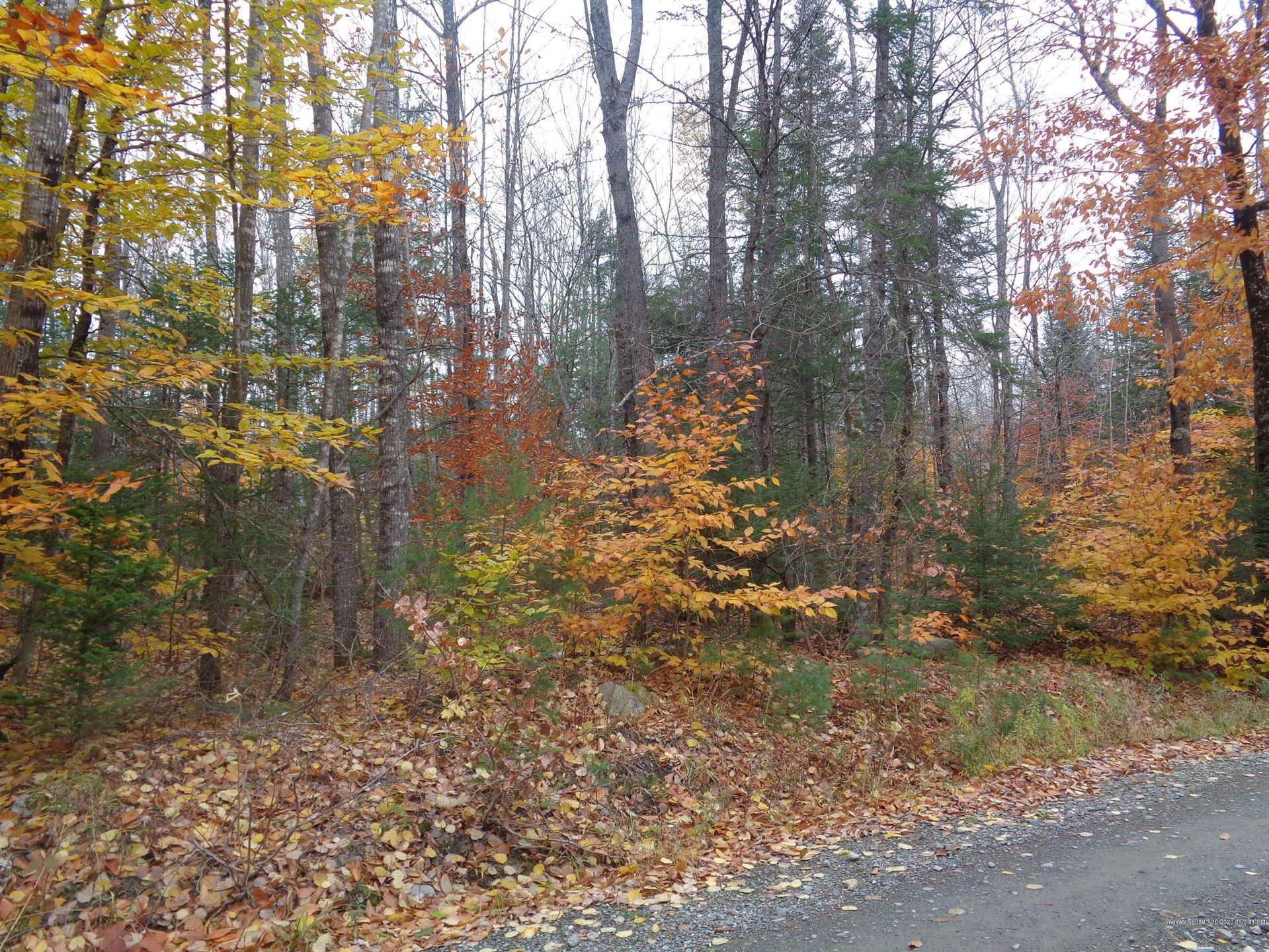 Photo of 0 West Road, Sangerville, ME 04479 (MLS # 1459383)