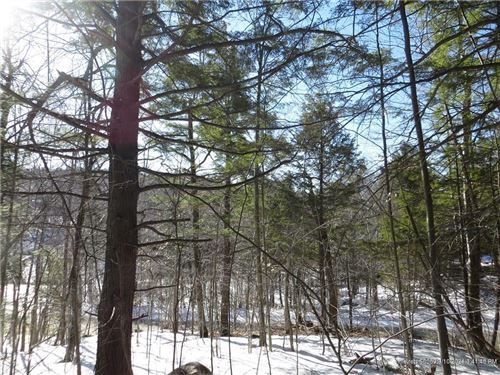 Photo of Lot 68 Douglas RD, Newry, ME 04261 (MLS # 1300405)