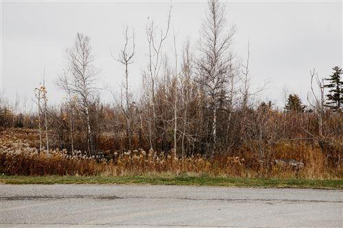 Photo of 35 Elaine Drive, Hermon, ME 04401 (MLS # 1441408)