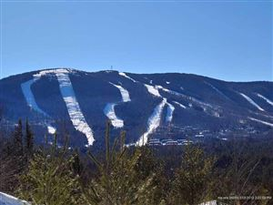 Photo of Lot80 Backcountry DR, Newry, ME 04261 (MLS # 1338411)
