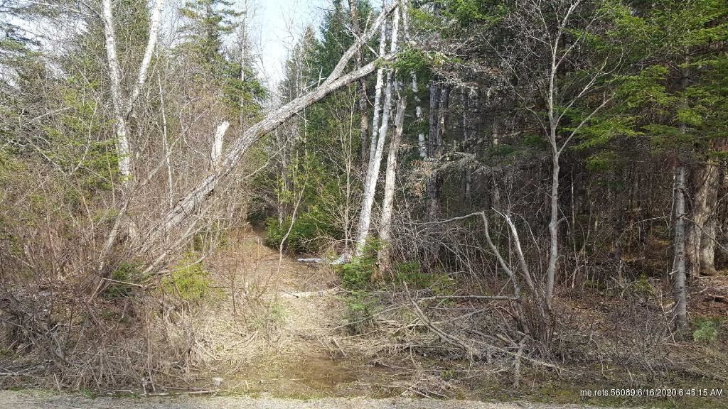 Photo of 0 Reed Road, Fort Fairfield, ME 04742 (MLS # 1456442)