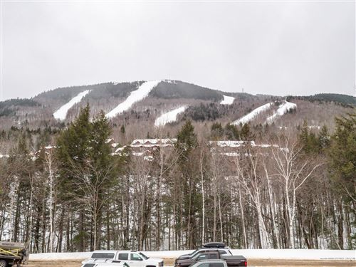 Photo of 16 Roadrunner Drive #A106, Newry, ME 04261 (MLS # 1482453)