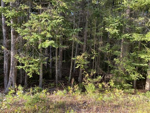 Photo of 00 Griffin Drive Drive, Milford, ME 04461 (MLS # 1510474)