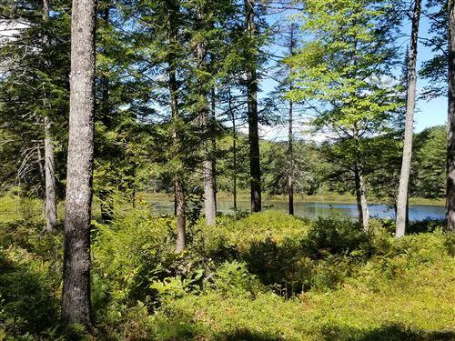 Photo of R03 Lot 1 Furlong Pond Lane, Greenwood, ME 04255 (MLS # 1468479)