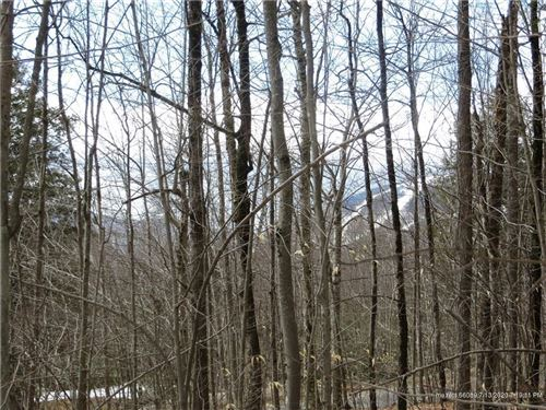 Photo of Lot 61 Douglas RD, Newry, ME 04261 (MLS # 1297513)