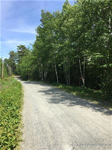 Photo of 0 Ginnie May Way (Map 9 Lot 72), Ellsworth, ME 04605 (MLS # 1357622)