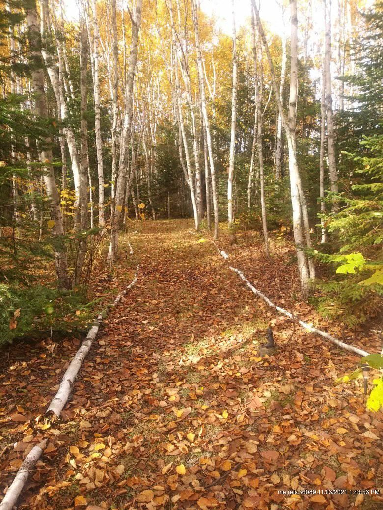 Photo of 195 Grimes Road, Caribou, ME 04736 (MLS # 1512624)