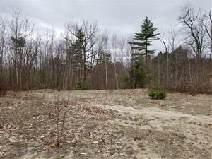 Photo of Lot 1A-2 Canterberry Drive, Waterford, ME 04088 (MLS # 1437644)