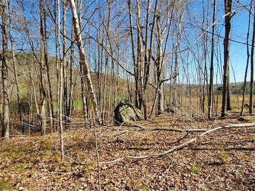Photo of 000 Richardson Hollow Road, Greenwood, ME 04255 (MLS # 1441659)