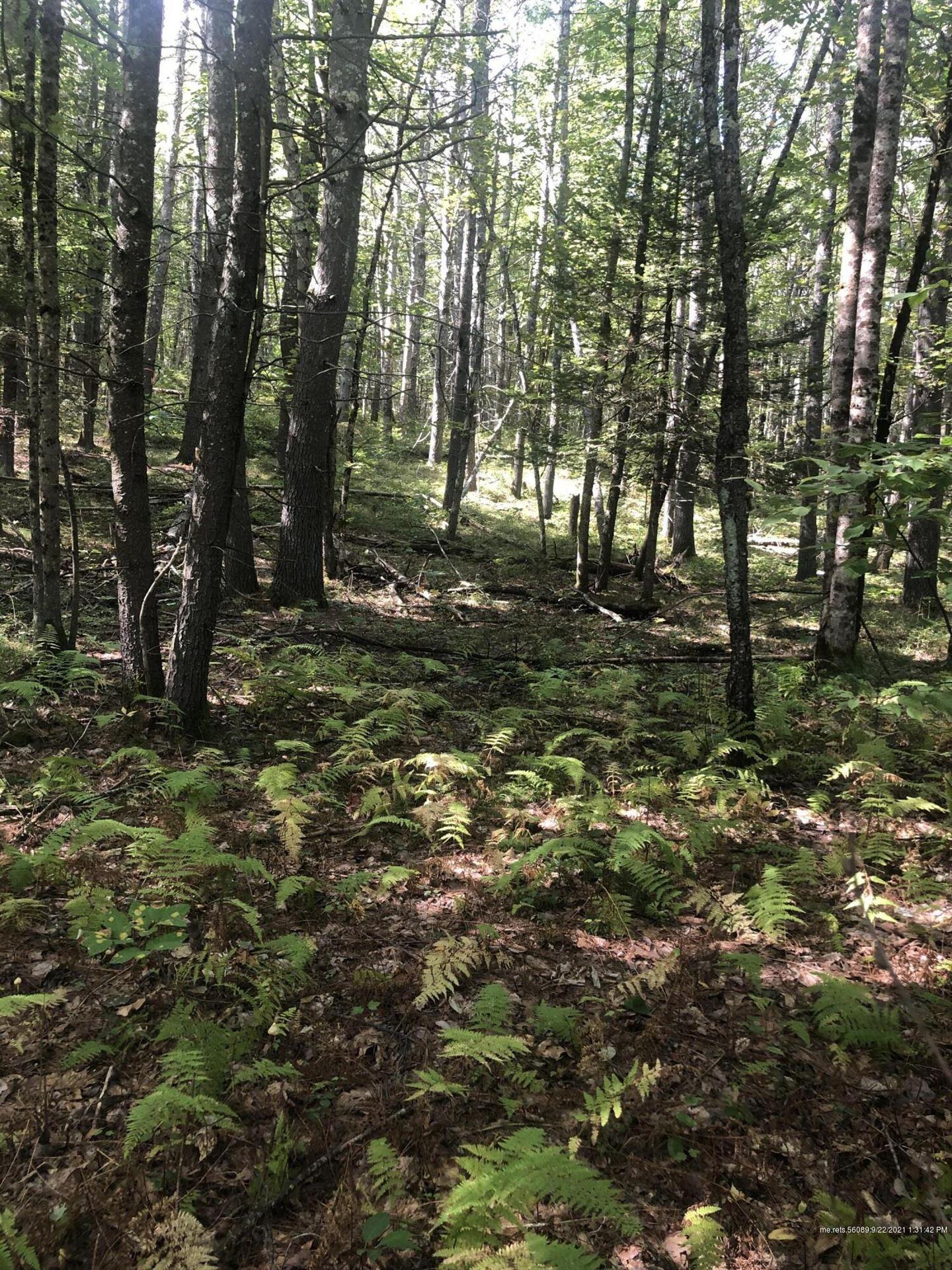 Photo of 0 Clarks Woods Road, Lyman, ME 04002 (MLS # 1509664)