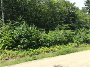 Photo of Lot 83&78 Beech Lane, Greenwood, ME 04255 (MLS # 1437710)